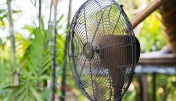 01_factorfake-mosquitoesvsfan_960x600