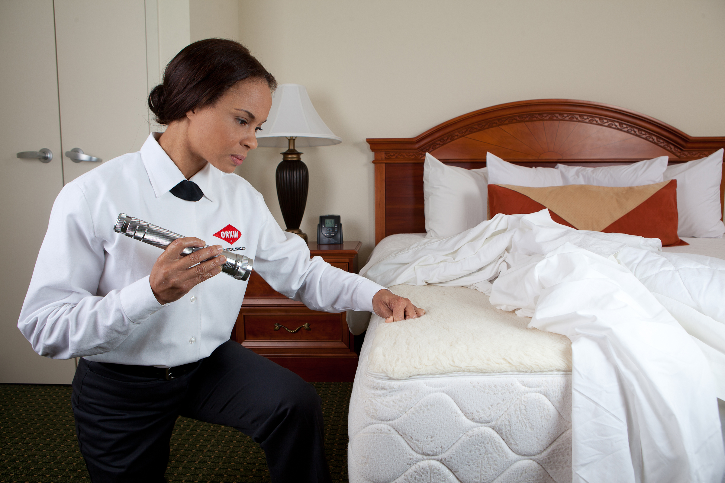 Register for Free Webinar on Combatting Bed Bugs in Hotels